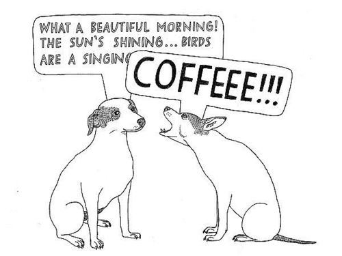 Beautiful Mornings Are Nothing Without Coffee
