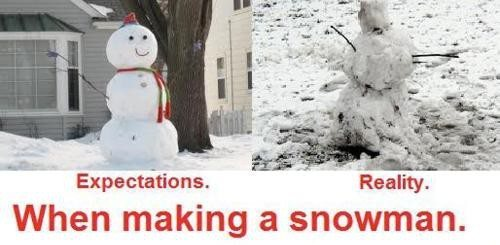 Building a Snowman: Expectations vs Reality