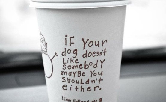 Listen to your dog.