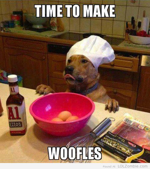 Dog Waffles