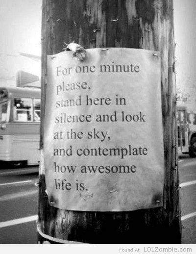 Contemplate Life