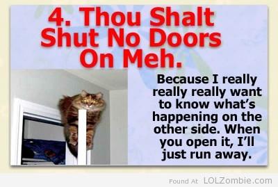4-Door