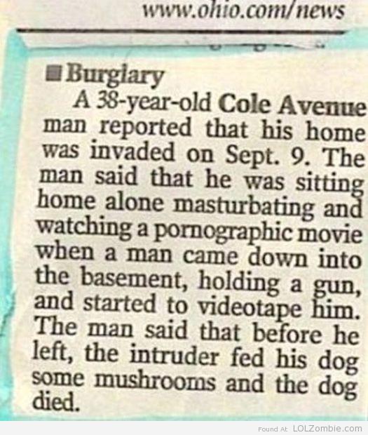 Dead Dog or on Drugs