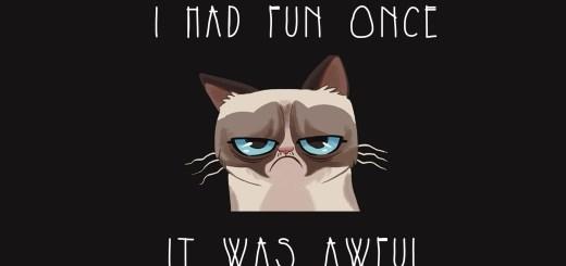 Grumpy Cat - Fun Once
