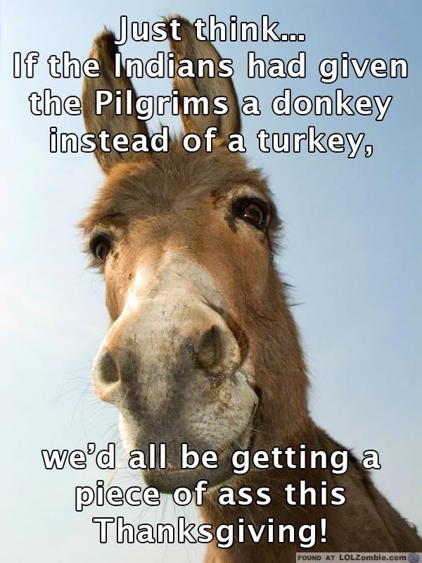Donkey Thanksgiving