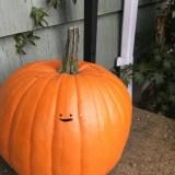 Minimalist Pumpkin