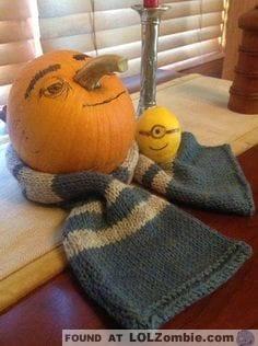 despicable-me-minion-pumpkins-14