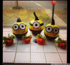 despicable-me-minion-pumpkins-6