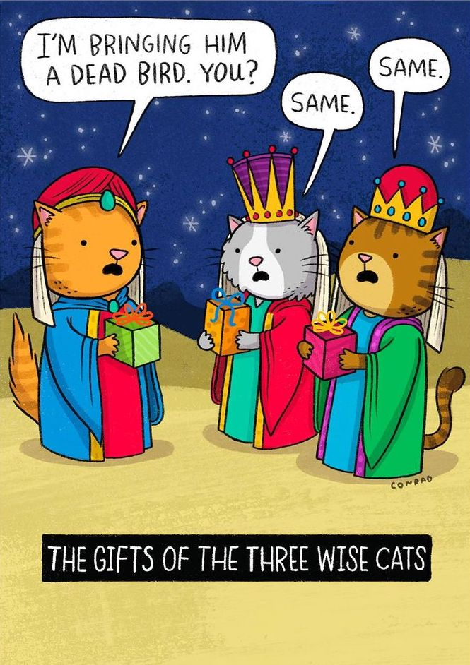 Three Wise Cats
