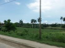 Paisaje, Sagua de Tánamo