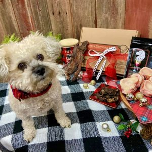 Santa Paws Gift Box