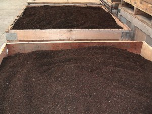 Worm Castings