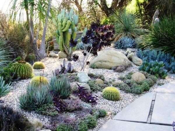 modern succulent garden ideas modern succulent garden   http://lomets.com
