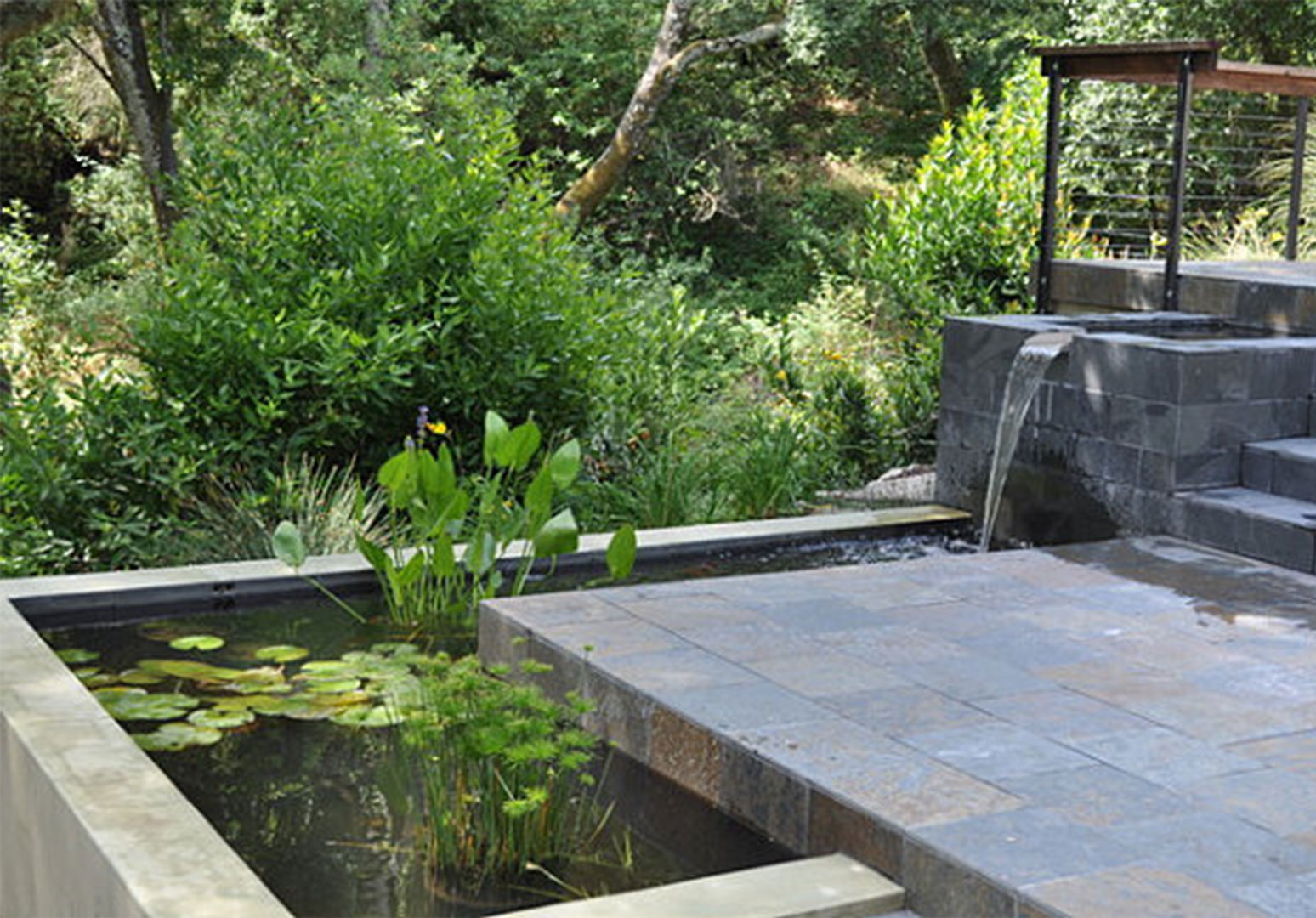 modern water garden | http://lomets.com on Modern Backyard Water Feature id=61574