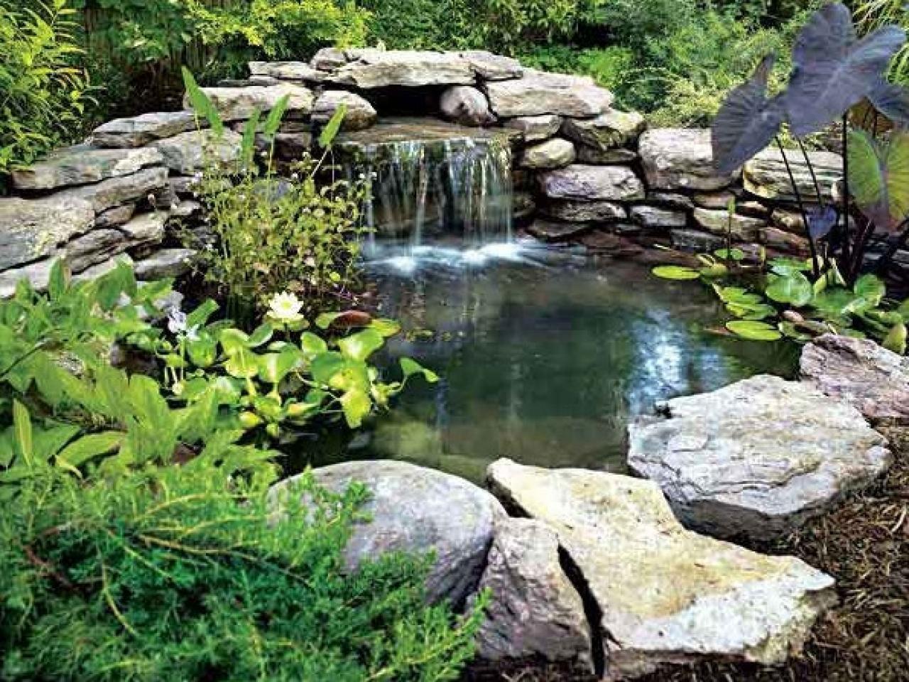 backyard-pond-waterfall-1000-ideas-about-small-garden ... on Small Backyard Pond With Waterfall id=99576