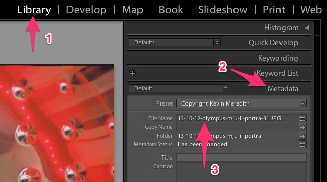 reamain files lightroom step by step