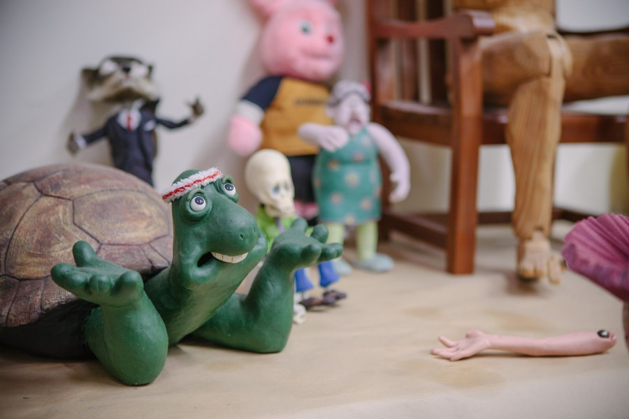 Frank the Tortoise From Creature Comforts
