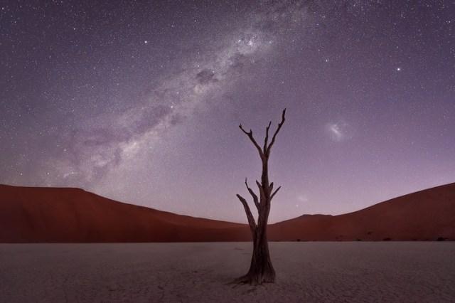 Deadvlei Twilight by Conor MacNeill