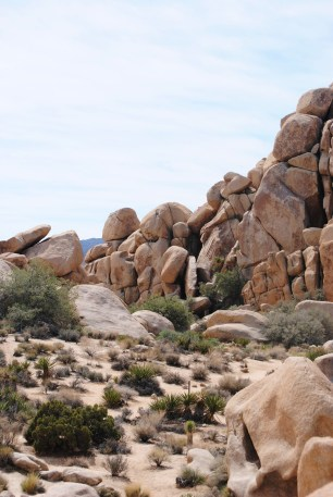 Entry to the 2015 DTP California Photo Contest. A rock formation at Joshua Tree National Park. Image copyright Dani Rabaiotti.