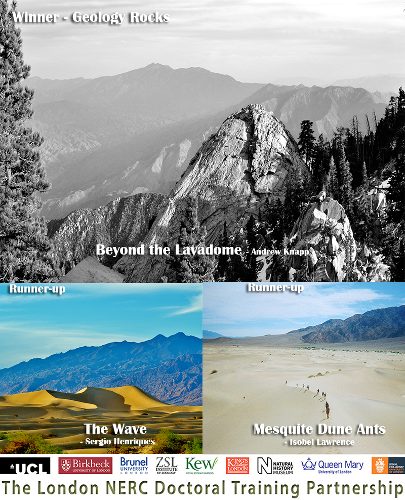 Geology Rocks Winners 2016