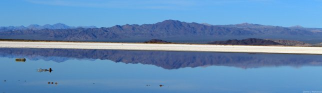 Soda lake. Image copyright Dan Nicholson.