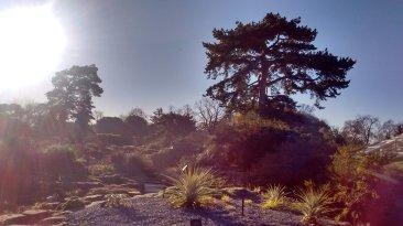 Biodiversity training at Kew Gardens. Image by Dan Nicholson.