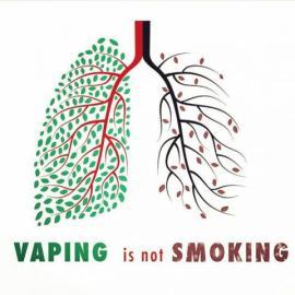 vaping better than smoking