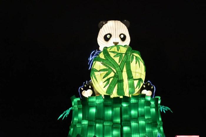 Panda Lantern at the Magical Lantern Festival