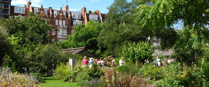 6 Glamorous London Wedding Venues - Chelsea Psychic Garden