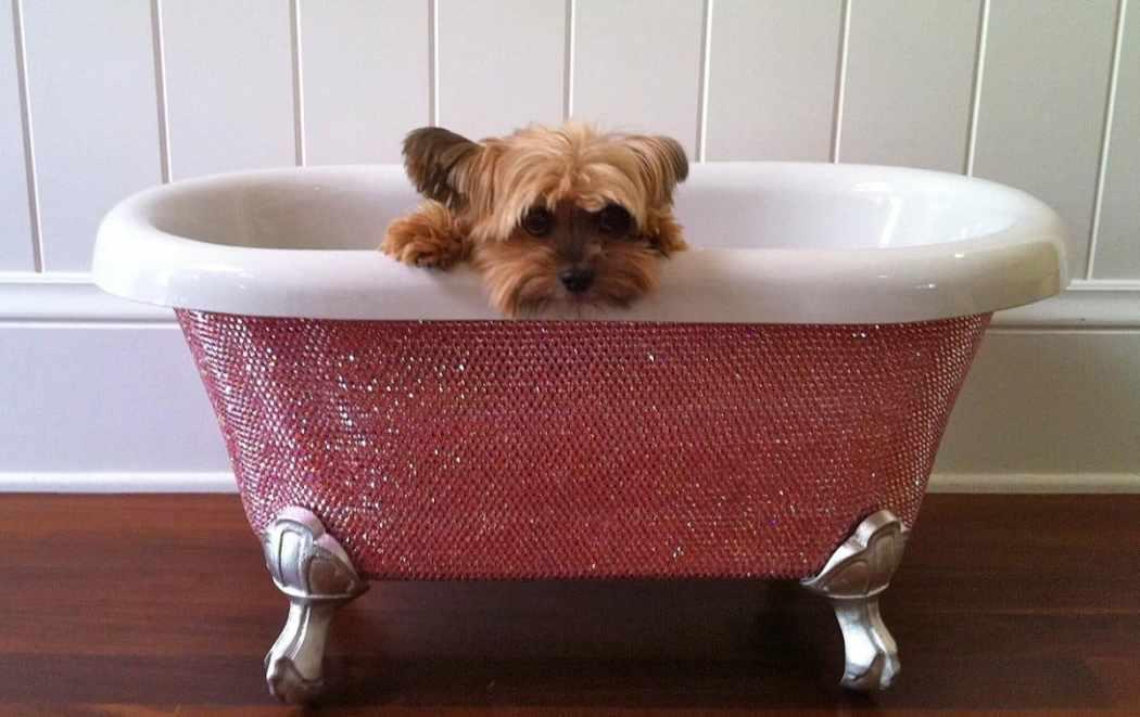 Luxury Products For Pampered Pets - Swarovski Crystal Studded Pet Bathtub - From TheDiamondBathTub.com