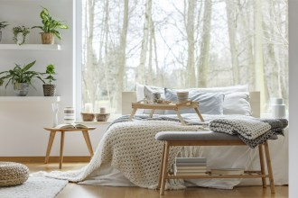 Calm white bedroom with plants and large window with view of trees.