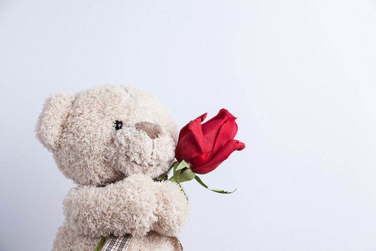Cute Teddy Bear holding a red rose.