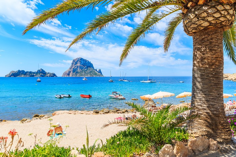 View of idyllic beach of Cala d'Hort wih palm tree in foreground, Ibiza island, Spain