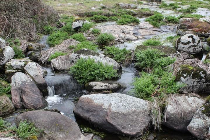 Stream under the Roman bridge