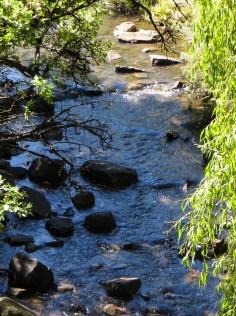 Crossing the stream at Glen Reenen Rest Camp