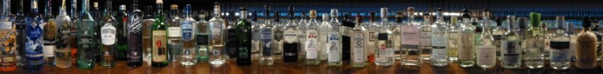 Just a few of our gins...