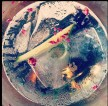 A lovely G & T . Photgraph by Katie Glass