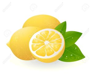 9832925-Fresh-lemons-with-leaves-Realistic-illustration-Stock-Vector-lemon-fruit-clipart