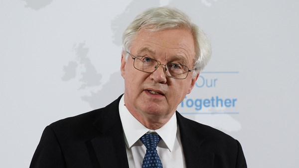 David Davis, Politics, EU, Brexit