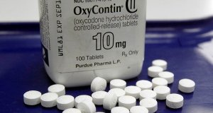 OxyContin, Drugs, Health, New York