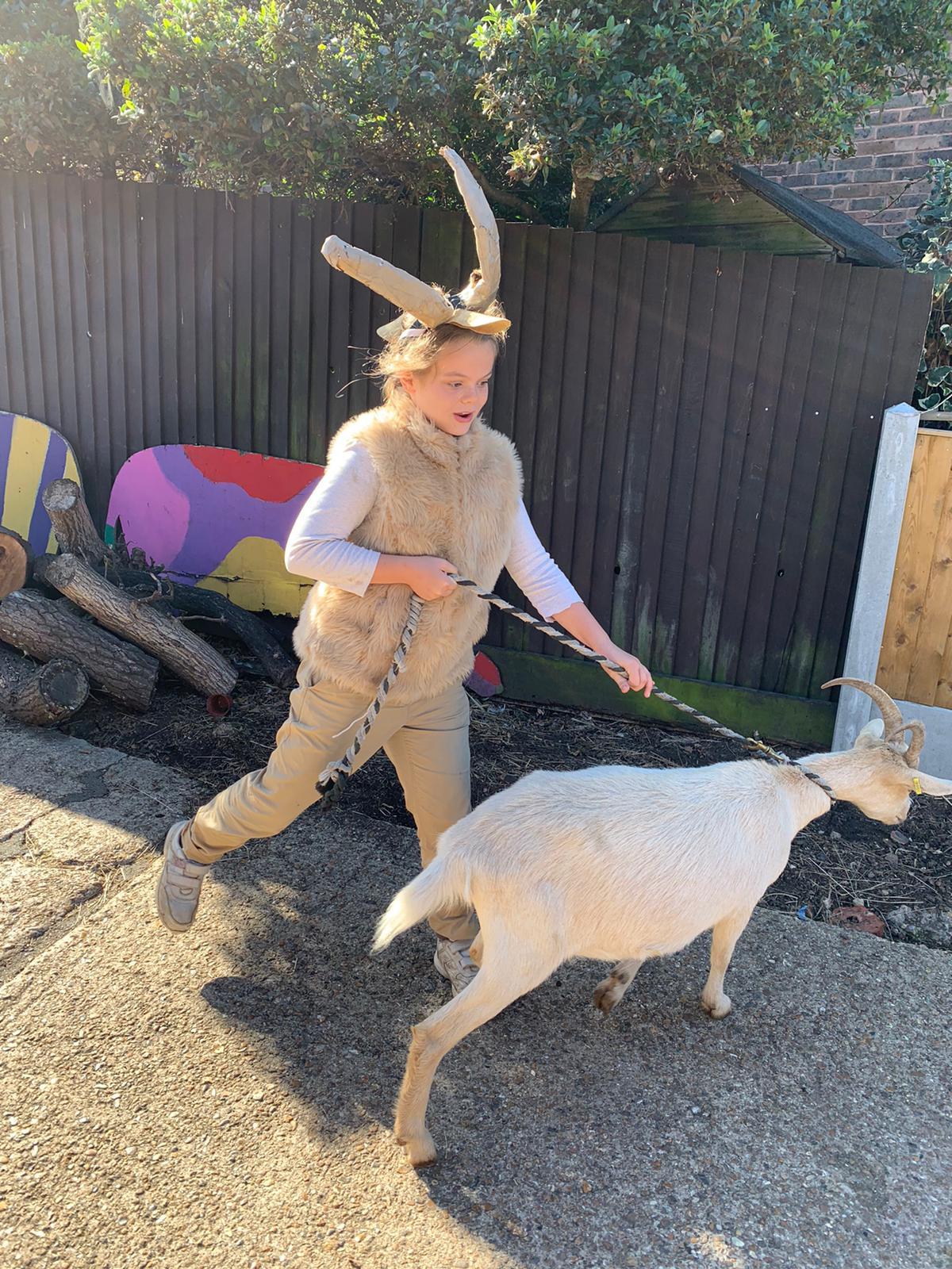 Animal most like its handler: Kentish Town City Farm
