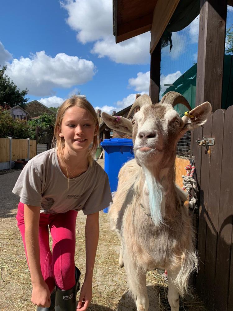 Best Goat Beard winner - Kentish Town City Farm