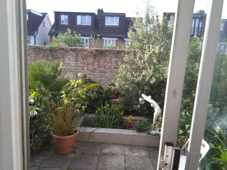 Best miniature garden in the ground winner - Seeds Project