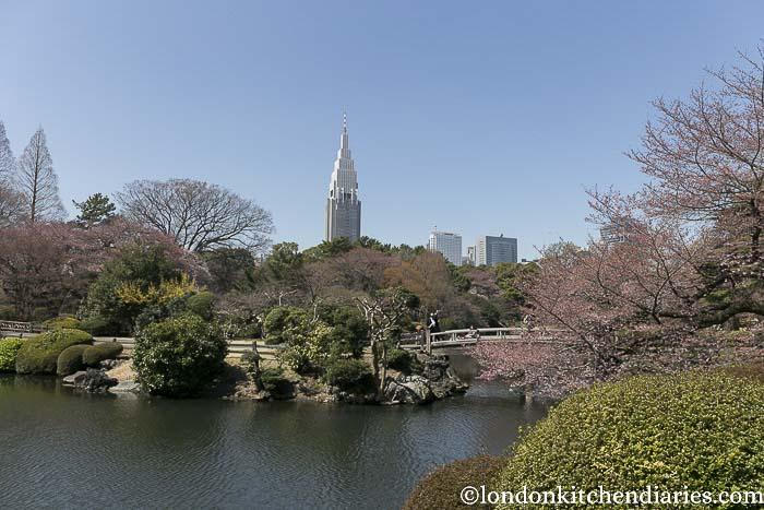Shinjuku/Gyoen/National/Garden
