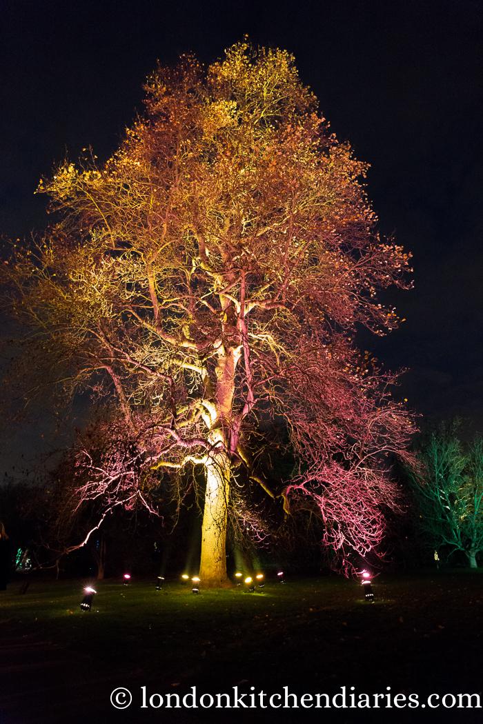 Kew Gardens, Christmas