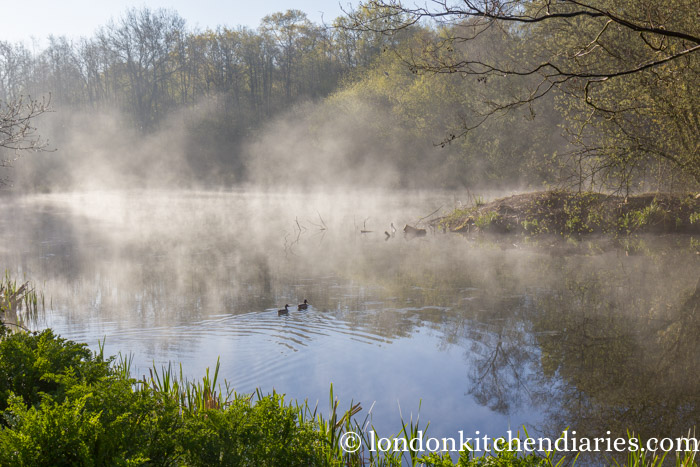 Mist covered lake at Sissinghurst Castle Estate in Kent