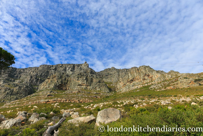 Table Mountain Cape Town Things to do