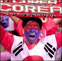 Football Fan (1)