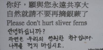 Silver Fern sign
