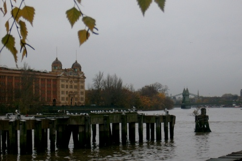 Harrods depository from Palace Wharf studio terrace
